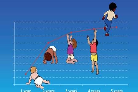 Biểu Đồ Tăng Trưởng Của Trẻ Em Theo WHO