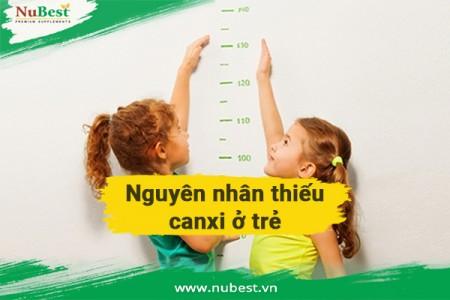 #7 Cách tăng chiều cao ở tuổi dậy thì cho nam nữ tại nhà.