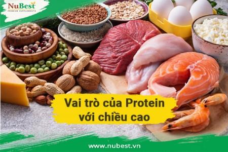 Vai Trò Của Protein Đối Với Tăng Chiều Cao