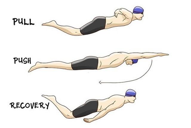 Mô phỏng 3 chuyển động cánh tay quạt nước khi thực hiện bơi bướm