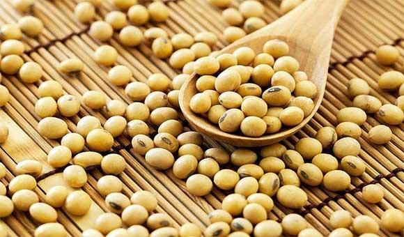 Đậu nành chứa rất nhiều vitamin có lợi cho sức khỏe