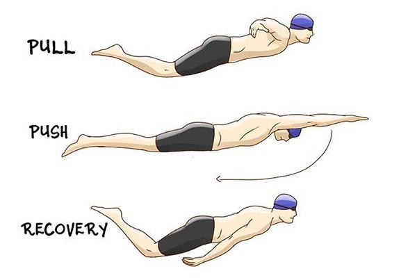 động tác tay khi bơi bướm