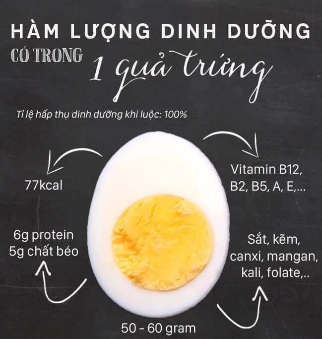 hàm lượng dinh dưỡng của trứng