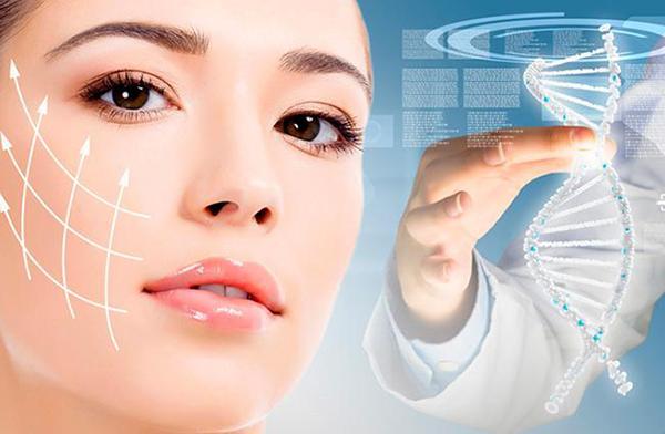 Collagen chiếm tới 70% cấu trúc da, phân bố chủ yếu ở lớp hạ bì