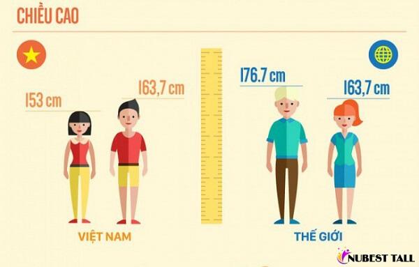 Việt Nam trong top người lùn nhất thế giới