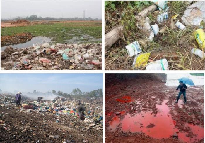 môi trường sống bị ô nhiễm