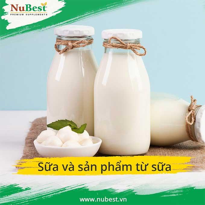 sữa và các sản phẩm từ sữa là thành phần không thể thíu trong thực đơn tăng chiều cao cho trẻ