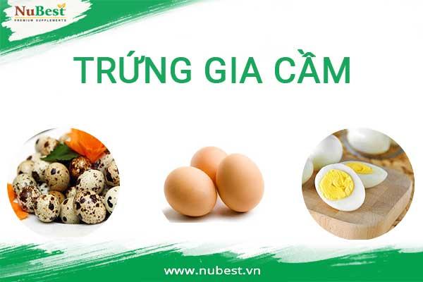 ăn các loại trứng gia cầm giúp tăng chiều cao