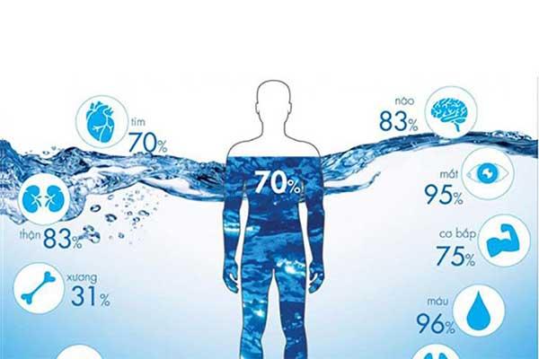 tỷ lệ nước trong cơ thể